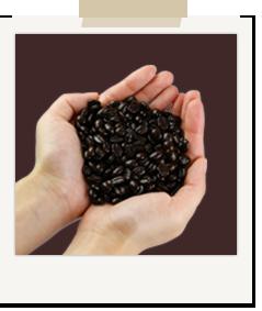 コーヒー豆を手ですくっている写真